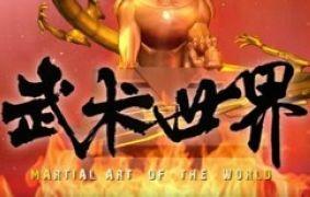 河南武術世界頻道