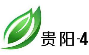 贵阳电视台4频道都市频道