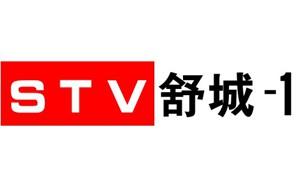 舒城电视台一套新闻综合频道